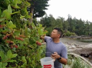 Edward Fu-Chen Juan collects salal berries near Ucluelet
